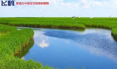 黑龙江飞鹤乳业有限公司