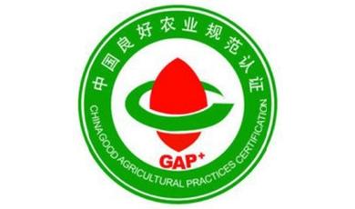 GAP良好农业规范认证